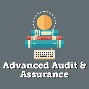 Audit Practice Assurance Services