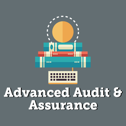 Audit Practice Assurance Services