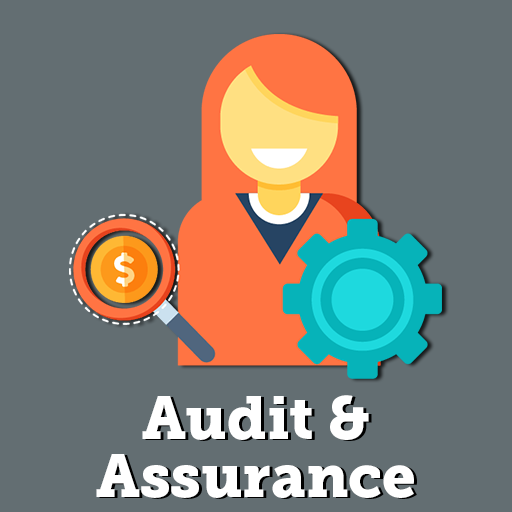 AA Audit and Assurance